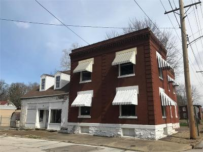 Belleville Single Family Home For Sale: 102 North 11th
