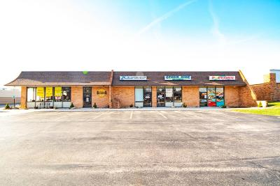 Alton Commercial For Sale: 231 East Delmar Avenue