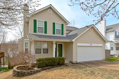 Ballwin Single Family Home For Sale: 528 Elm Crossing Court