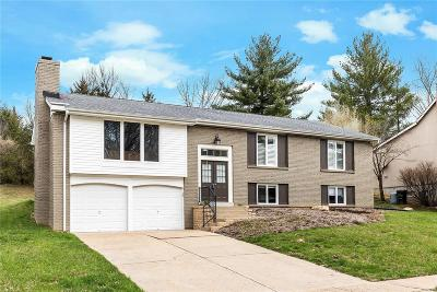 Chesterfield Single Family Home For Sale: 15478 Shadyford Court