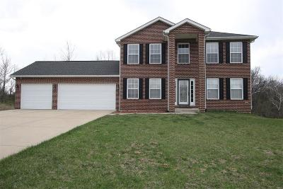 Fairview Heights Single Family Home For Sale: 9126 Basswood Drive