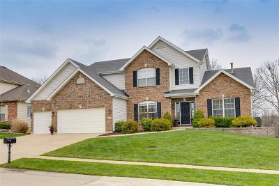 Wentzville MO Single Family Home For Sale: $399,900