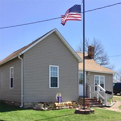 Desloge Single Family Home For Sale: 308 South Grant