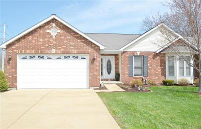 Franklin County Single Family Home For Sale: 1321 Apple Blossom Lane