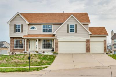 Wentzville MO Single Family Home For Sale: $324,900