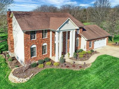 Washington Single Family Home For Sale: 9 Autumn Meadow Court
