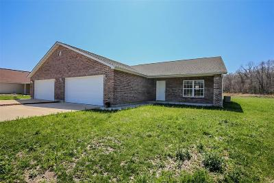 Catawissa, Robertsville Single Family Home For Sale: 124 Augustine Heights Drive