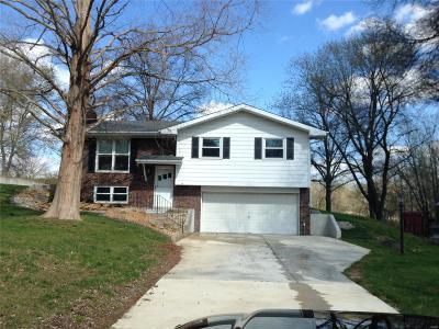 Edwardsville Single Family Home For Sale: 418 Circle Drive