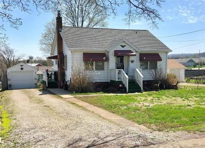 Park Hills, Desloge Single Family Home For Sale: 309 9th Street