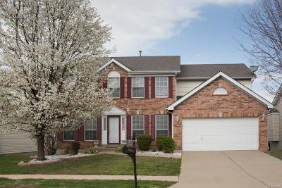 Single Family Home For Sale: 10 Rivermeadows