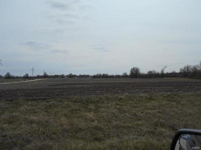 Marion County, Monroe County, Ralls County, Shelby County, Knox County, Lewis County Farm For Sale: 51950 Audrain Lane