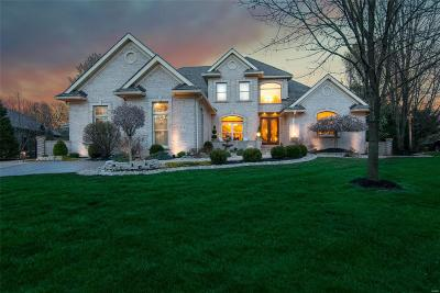 Edwardsville IL Single Family Home For Sale: $695,000