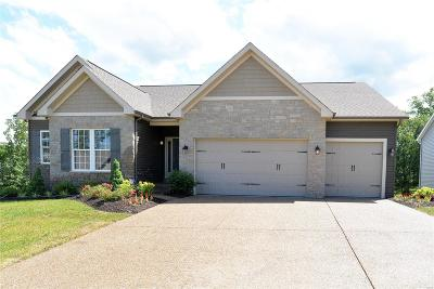 Wentzville Single Family Home For Sale: 1 Pinewood Trails Drive