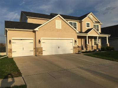 Wentzville Single Family Home For Sale: 153 Wilmer Valley Drive