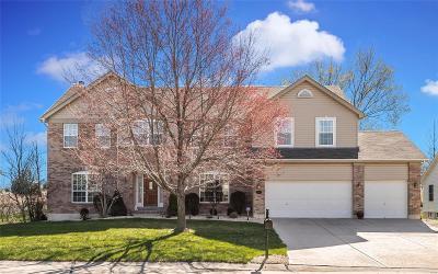 Dardenne Prairie Single Family Home For Sale: 710 Balcarra Drive