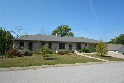 Hannibal MO Single Family Home For Sale: $329,900