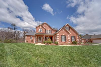 Belleville, Collinsville, Edwardsville, Glen Carbon, Highland, O Fallon, St Jacob, Swansea, Troy, Caseyville, Columbia, Fairview Heights, Lebanon, Mascoutah, Millstadt, New Baden, Shiloh, O'fallon Single Family Home For Sale: 31 Wolf Creek Drive