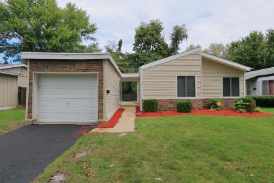 Single Family Home For Sale: 1382 Langholm Drive