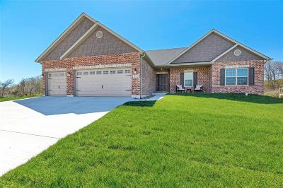 Columbia New Construction For Sale: 419 Carr Creek Drive