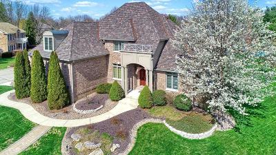 Glen Carbon Single Family Home For Sale: 11 Kensington Court