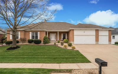 ST CHARLES Single Family Home For Sale: 761 Meadow Cliff Drive