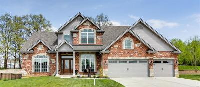 St Peters Single Family Home For Sale: 520 Auburn Trace Lane