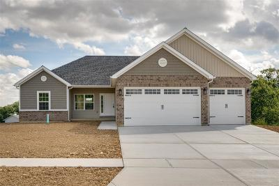 Foristell Single Family Home For Sale: 31942 Tea Olive Drive