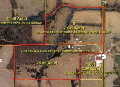 Lincoln County, Warren County Single Family Home For Sale: 1509 Highway T 52ac #52ac