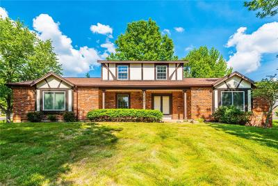 Chesterfield Single Family Home For Sale: 15538 Easy Ridge Court