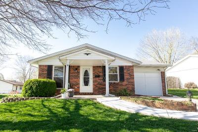 Mascoutah Single Family Home For Sale: 406 West South Street