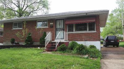 Single Family Home For Sale: 9120 Bessemer Ave