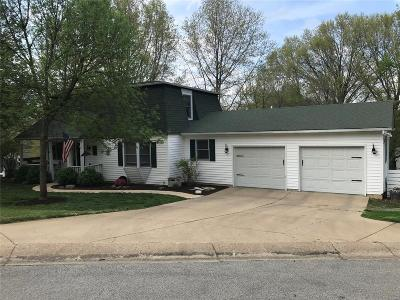 Franklin County Single Family Home For Sale: 6 Valley Drive