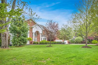 Single Family Home For Sale: 10003 Schuessler Road