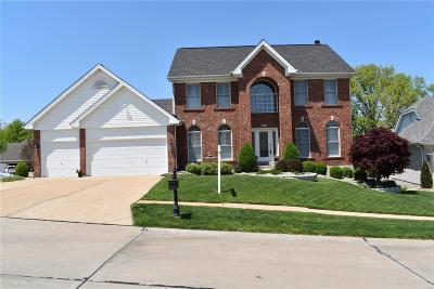 Single Family Home For Sale: 4960 Sunset Oaks