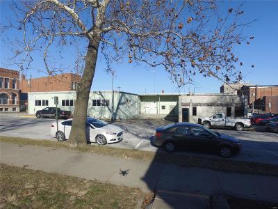 Hannibal MO Commercial For Sale: $249,000
