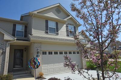 Edwardsville, Glen Carbon, Maryville, Troy, Collinsville, Caseyville, Fairview Heights, O'fallon, Belleview Single Family Home For Sale: 6837 Hampshire Court