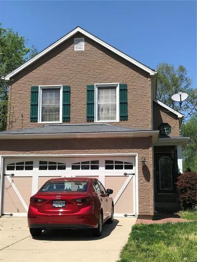 Single Family Home For Sale: 125 Reasnor Avenue