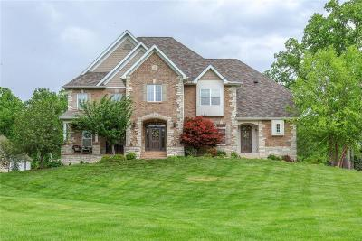 Single Family Home For Sale: 13173 West Watson Road