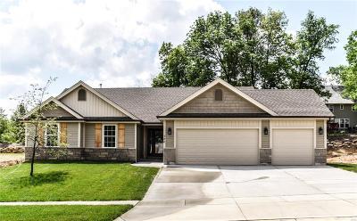 Wentzville Single Family Home For Sale: 120 Peine Valley Court