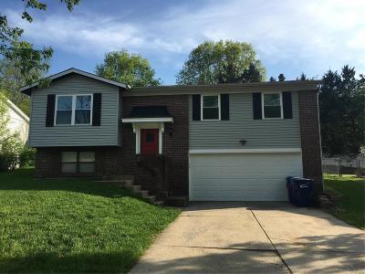 Single Family Home For Sale: 1382 Premio Drive