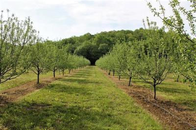 Troy Farm For Sale: 65 Oak Valley