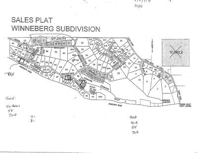 Residential Lots & Land For Sale: 207 Winneberg Road