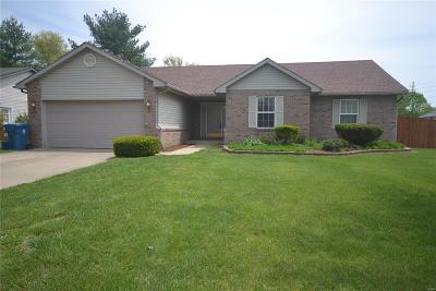 Belleville Single Family Home For Sale: 920 Fox Glen Lane