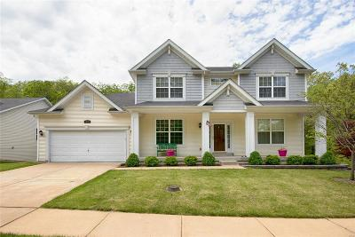 High Ridge Single Family Home For Sale: 1448 Heritage Valley Drive