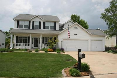 O'Fallon Single Family Home For Sale: 7361 Little Oaks Drive