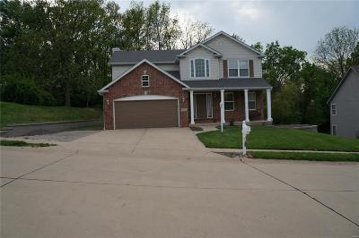 Edwardsville IL Single Family Home For Sale: $299,000