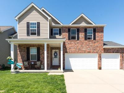 Mascoutah Single Family Home For Sale: 1104 Gulfstream Way