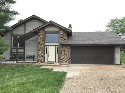 Wentzville Single Family Home For Sale: 1 Palomino Court