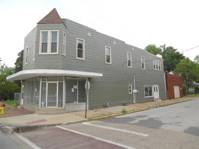 Belleville Commercial For Sale: 300 North Charles Street