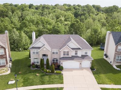 St Louis Single Family Home For Sale: 4361 Ventura Place Drive